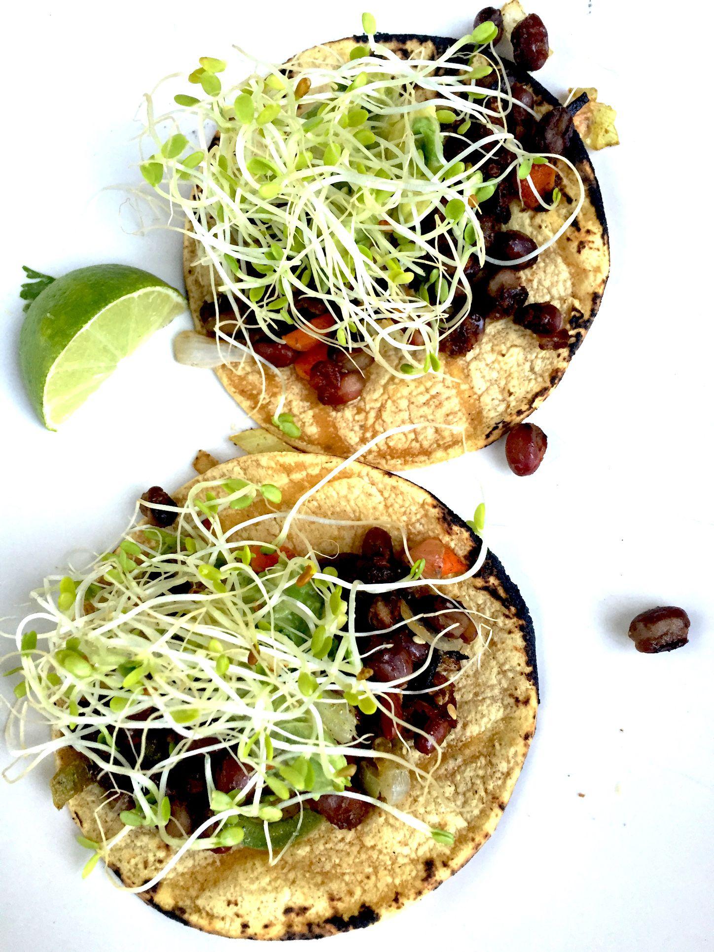 David's Black Bean Tacos, Fresh Cooking, from the Sian Ka'an, near Tulum
